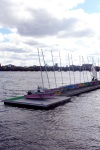 Sails on Charles River